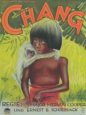 Chang (D1petit)